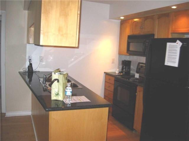 Condo Apartment at 250 Wellington St W, Unit 439, Toronto, Ontario. Image 9