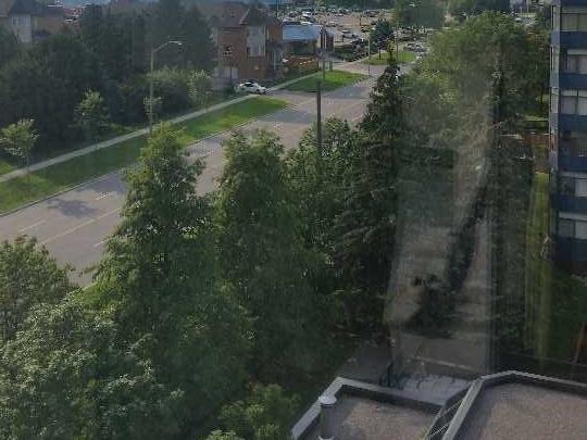 Condo Apartment at 80 Alton Towers Circ, Unit 710, Toronto, Ontario. Image 9