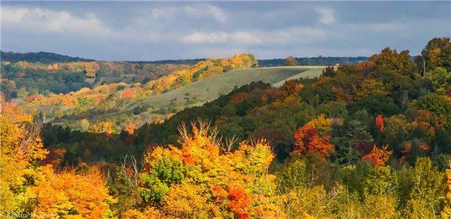 Vacant Land at 7345 Thompson Rd, Clarington, Ontario. Image 5
