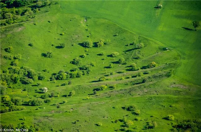 Vacant Land at 7345 Thompson Rd, Clarington, Ontario. Image 8