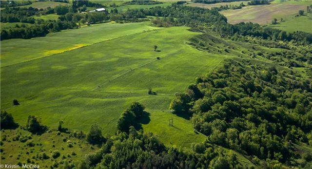 Vacant Land at 7345 Thompson Rd, Clarington, Ontario. Image 12