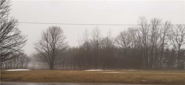 Vacant Land at Lot 21 20th Side Rd, Barrie, Ontario. Image 2