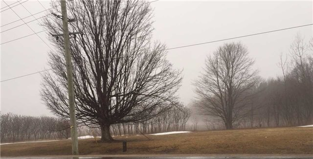 Vacant Land at Lot 21 20th Side Rd, Barrie, Ontario. Image 3