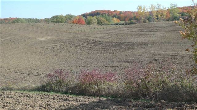 Vacant Land at 7900 18th Sdrd, King, Ontario. Image 2