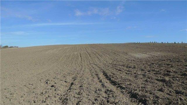 Vacant Land at 7900 18th Sdrd, King, Ontario. Image 6