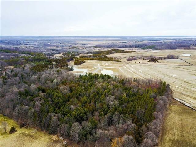 Vacant Land at 1286 Doane Rd, East Gwillimbury, Ontario. Image 6