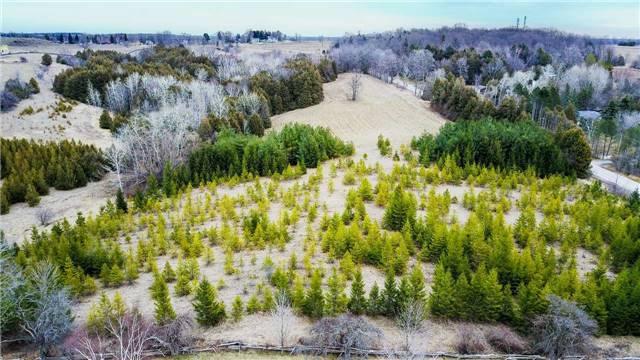 Vacant Land at 1286 Doane Rd, East Gwillimbury, Ontario. Image 7