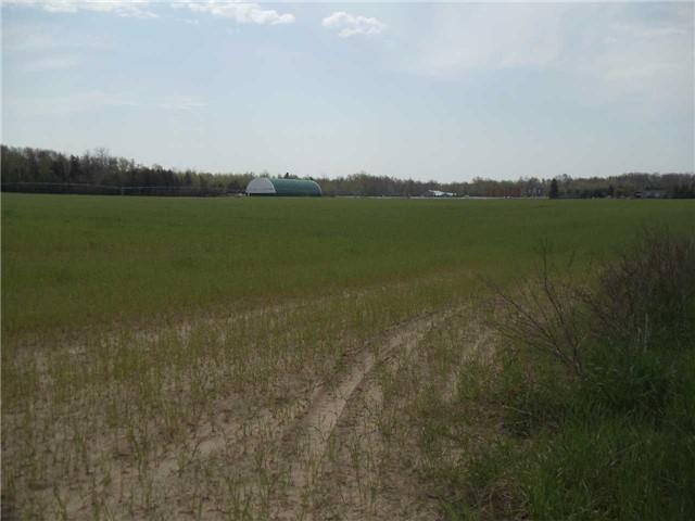 Vacant Land at 3867 Adjala Tecumseth Twn Line, New Tecumseth, Ontario. Image 4