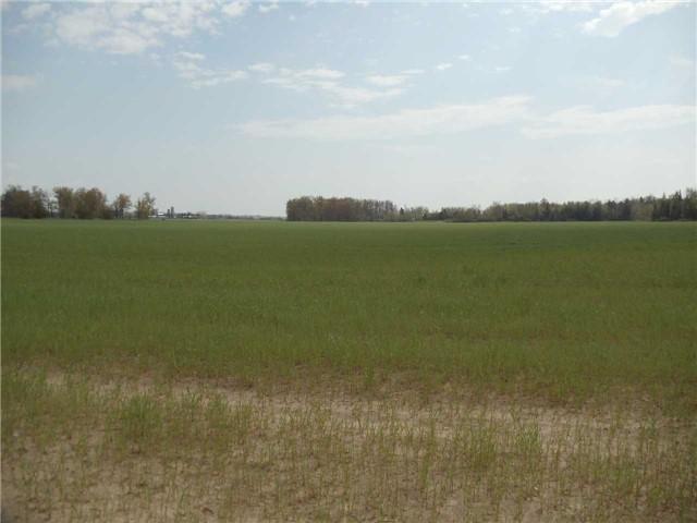 Vacant Land at 3867 Adjala Tecumseth Twn Line, New Tecumseth, Ontario. Image 5