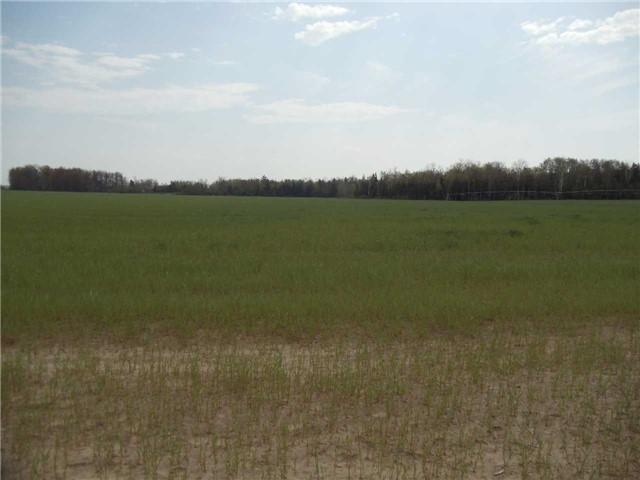 Vacant Land at 3867 Adjala Tecumseth Twn Line, New Tecumseth, Ontario. Image 7