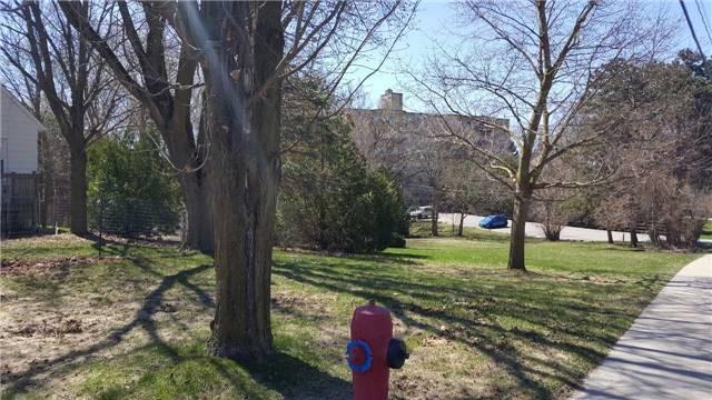 Vacant Land at 66B Roxborough Rd, Newmarket, Ontario. Image 6