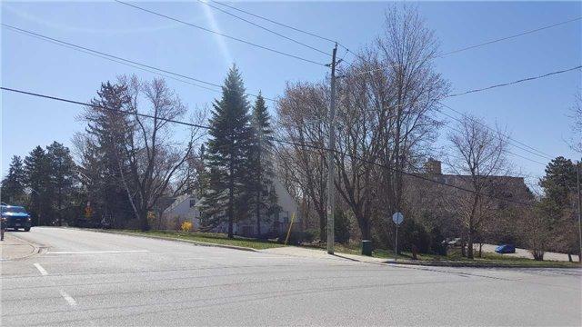 Vacant Land at 66B Roxborough Rd, Newmarket, Ontario. Image 8