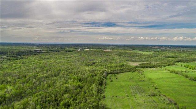 Detached at 6196 Ravenshoe Rd, Georgina, Ontario. Image 5