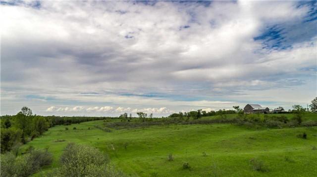 Detached at 6196 Ravenshoe Rd, Georgina, Ontario. Image 7
