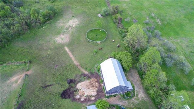 Detached at 6196 Ravenshoe Rd, Georgina, Ontario. Image 8