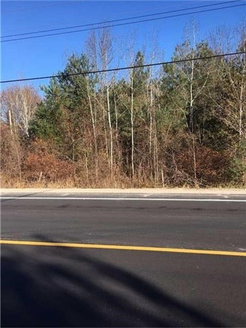 Vacant Land at 1370 St Johns Rd, Innisfil, Ontario. Image 1