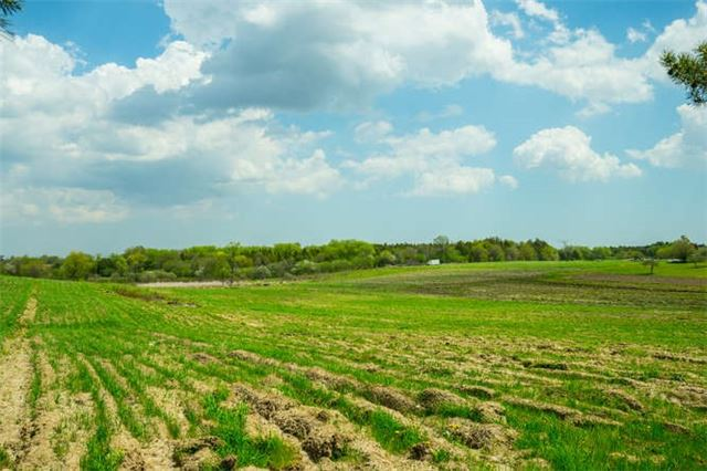 Vacant Land at 12875 Tenth Line, Whitchurch-Stouffville, Ontario. Image 3