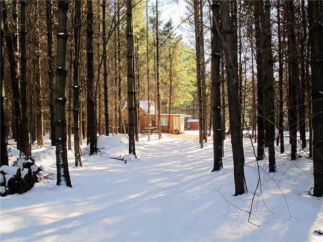 Vacant Land at B1730 Conc 3, Brock, Ontario. Image 1