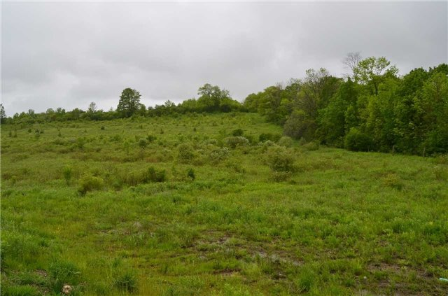 Vacant Land at 0 St. Mary's Blvd, Brock, Ontario. Image 2