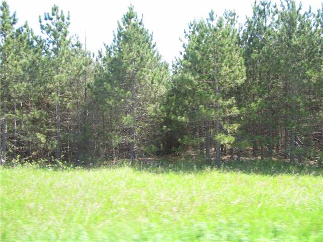 Vacant Land at 5529 Concession 4 Ave, Uxbridge, Ontario. Image 5