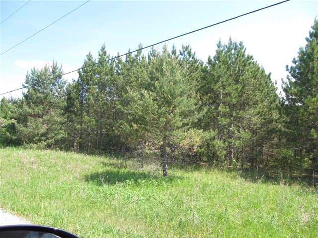 Vacant Land at 5529 Concession 4 Ave, Uxbridge, Ontario. Image 6