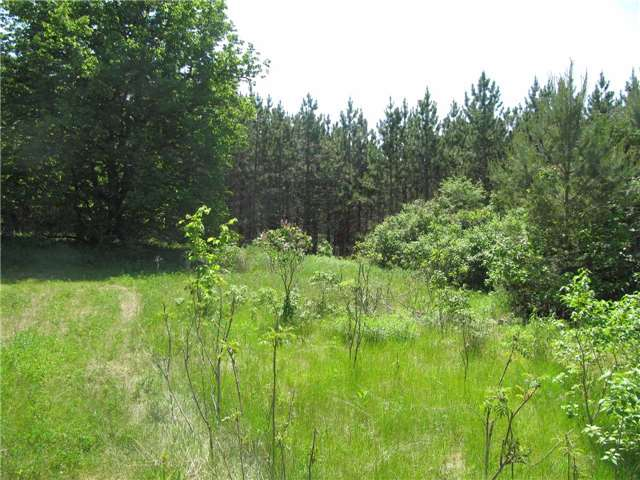 Vacant Land at 5529 Concession 4 Ave, Uxbridge, Ontario. Image 7