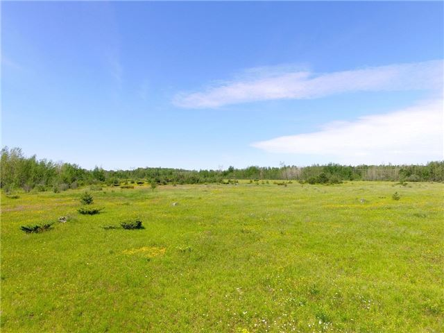 Vacant Land at Lot 1 Concession 7 Rd, Brock, Ontario. Image 1