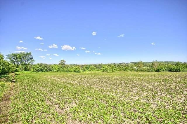Vacant Land at Con 4 Part Lot 2 Rd, Brock, Ontario. Image 17