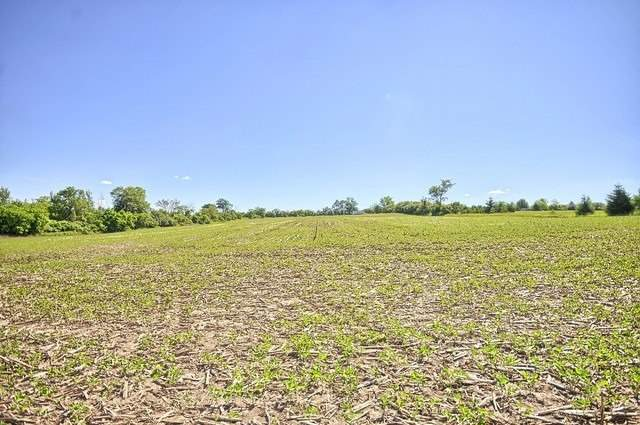 Vacant Land at Con 4 Part Lot 2 Rd, Brock, Ontario. Image 19