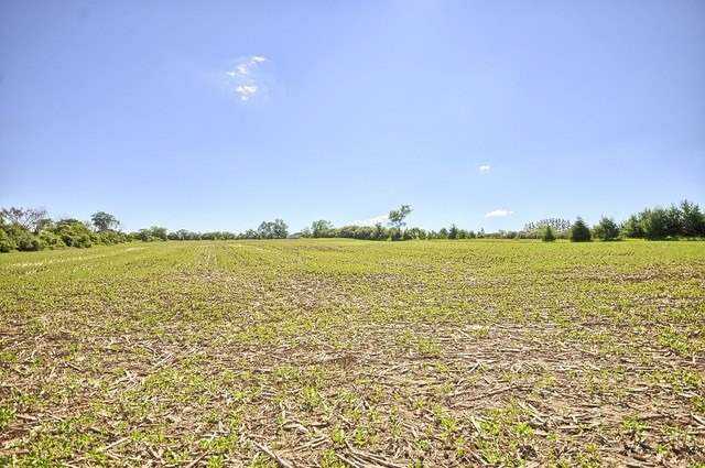 Vacant Land at Con 4 Part Lot 2 Rd, Brock, Ontario. Image 20
