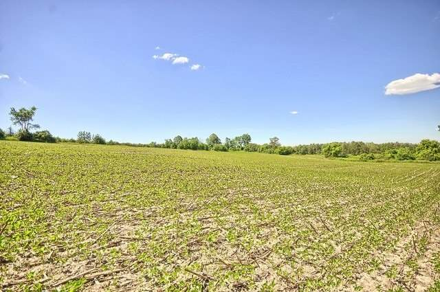 Vacant Land at Con 4 Part Lot 2 Rd, Brock, Ontario. Image 4