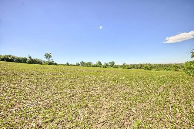Vacant Land at Con 4 Part Lot 2 Rd, Brock, Ontario. Image 6