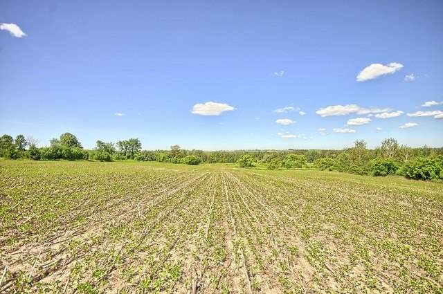 Vacant Land at Con 4 Part Lot 2 Rd, Brock, Ontario. Image 11