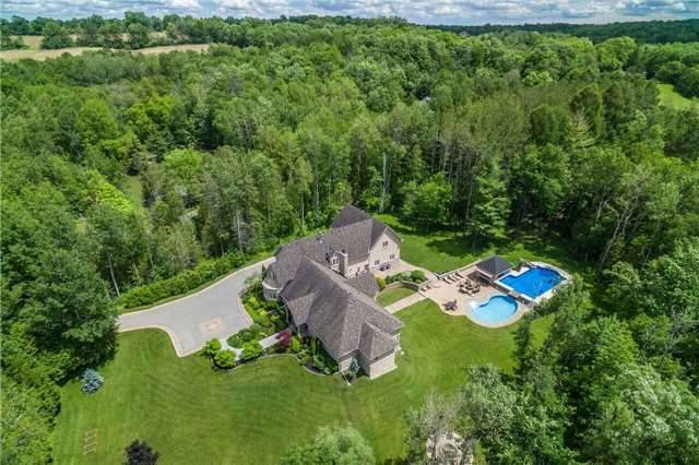 Detached at 281 Spruce Hill Rd, King, Ontario. Image 12