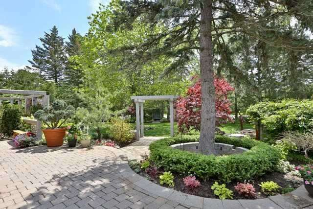 Detached at 4066 19th Ave, Markham, Ontario. Image 7