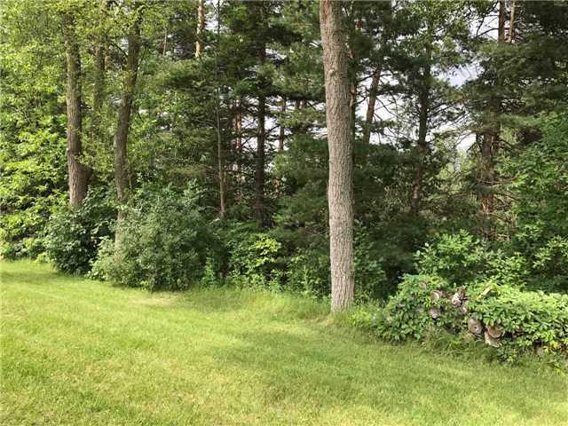 Vacant Land at 3 Kindlers Rd, New Tecumseth, Ontario. Image 5