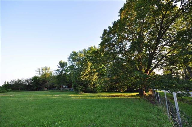 Vacant Land at 50 & 51 Thorah Park Blvd, Brock, Ontario. Image 6