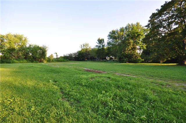 Vacant Land at 50 & 51 Thorah Park Blvd, Brock, Ontario. Image 7