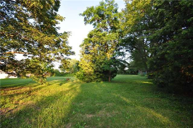 Vacant Land at 50 & 51 Thorah Park Blvd, Brock, Ontario. Image 9