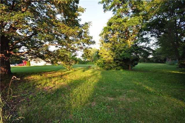 Vacant Land at 50 & 51 Thorah Park Blvd, Brock, Ontario. Image 10