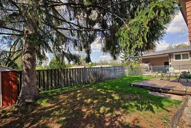 Detached at 792 Greenfield Cres, Newmarket, Ontario. Image 13