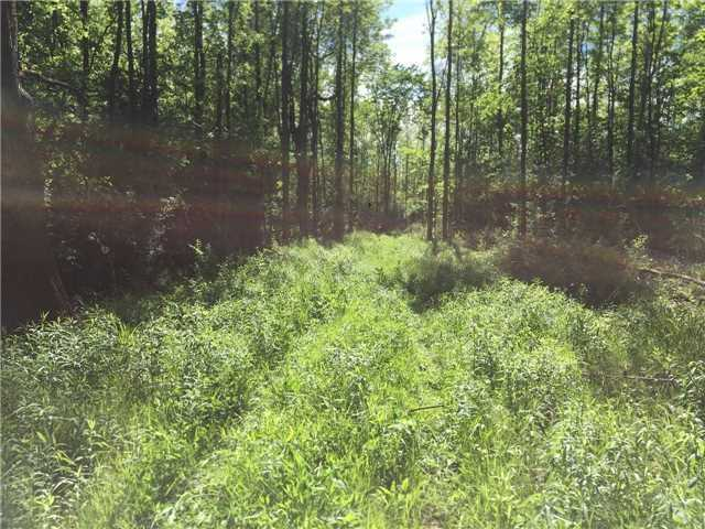 Vacant Land at Pt Lt 1 Concession 13 Rd, Brock, Ontario. Image 2