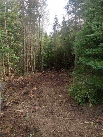 Vacant Land at B2180 10 Th ,Concession Rd Rd E, Brock, Ontario. Image 4