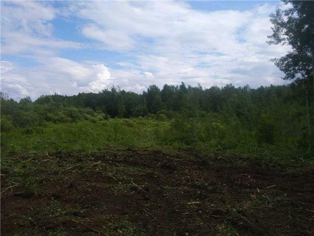 Vacant Land at B2180 10 Th ,Concession Rd Rd E, Brock, Ontario. Image 7