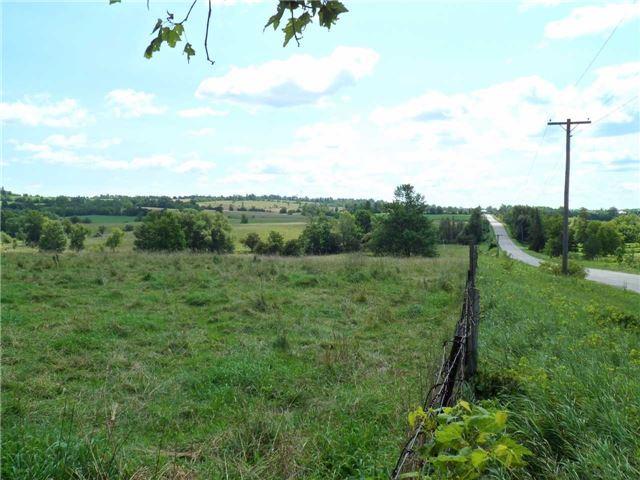Vacant Land at 5043 Concession 3 Rd, Adjala-Tosorontio, Ontario. Image 12