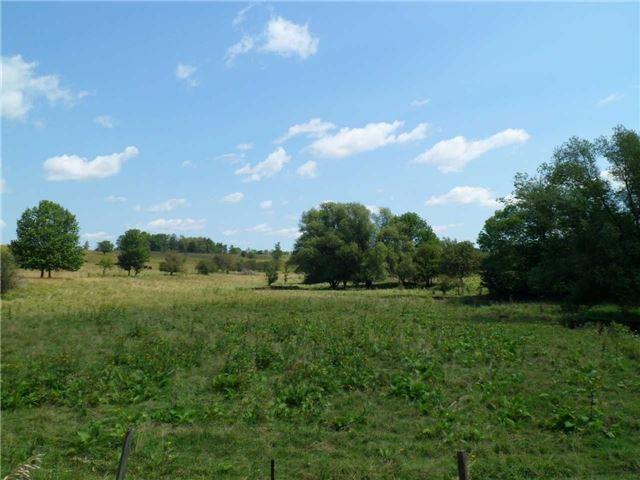 Vacant Land at 5043 Concession 3 Rd, Adjala-Tosorontio, Ontario. Image 15