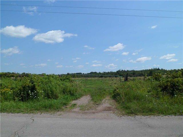 Vacant Land at 5043 Concession 3 Rd, Adjala-Tosorontio, Ontario. Image 17