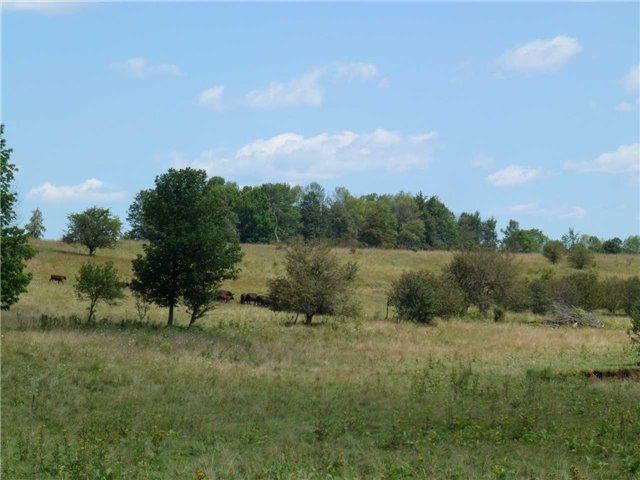 Vacant Land at 5043 Concession 3 Rd, Adjala-Tosorontio, Ontario. Image 20
