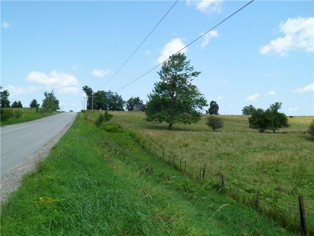 Vacant Land at 5043 Concession 3 Rd, Adjala-Tosorontio, Ontario. Image 3