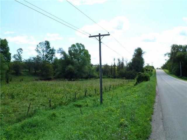 Vacant Land at 5043 Concession 3 Rd, Adjala-Tosorontio, Ontario. Image 4